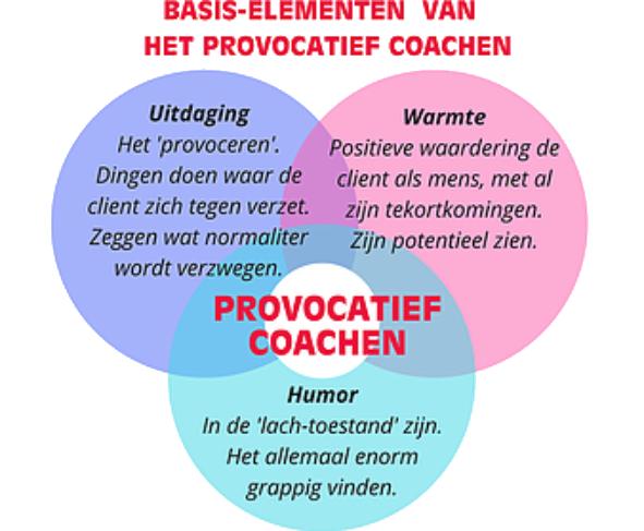 provocatief coachen whats nekzt